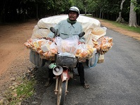 Cambodian Culture - Bread Salesman