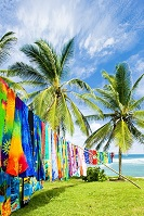 Barbadian Culture - Beach towels