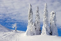 Bosnian Geography - Jahorina Mountains
