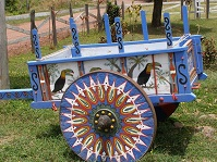 Costa Rican Culture - Ox cart