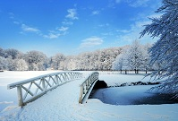 Dutch Geography - Bridge in the winter
