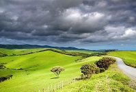 New Zealand Geography - Landscape
