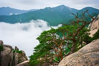 South Korean Geography - Seorak Mountains