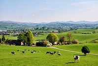 British Geography - English countryside