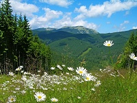 Ukrainian Geography - Carpathian Mountains