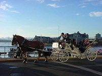 Canadian Culture - Carriage in Victoria